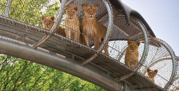 General Admission Philadelphia Zoo